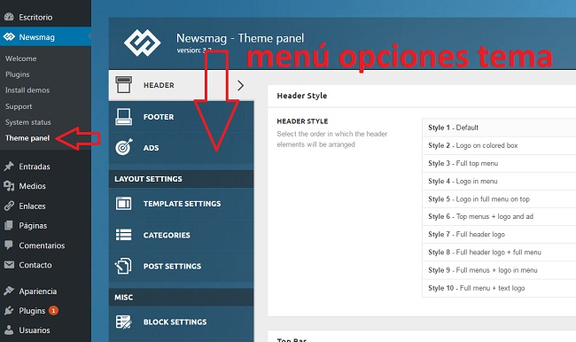 guia-lanzamiento-web-opciones-tema-wordpress