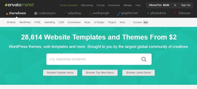 guia-lanzar-web-elegir-tema