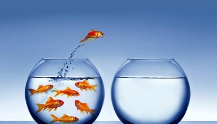 Pensar diferente acercará a tu negocio al éxito